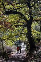 Walkers on the route of Camino del Agua, in Las Batuecas-Sierra de Francia Natural Park  Mogarraz  Monforte de la Sierra  Salamanca  Castilla y León  ...