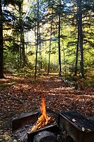 A morning campfire