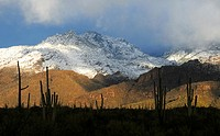 Snow covers the Santa Catalina Mountains in the Coronado National Forest in the Sonoran Desert,Tucson, Arizona, USA