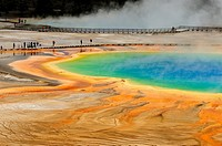Visitors and boardwalks at Grand Prismatic Spring
