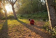 Boy playing on a park in the afternoon