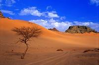 afrique,sahara,libye : désert sud-ouest