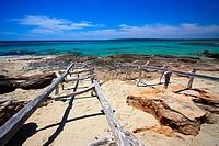Playa de Migjorn  Formentera  Islas Baleares  España / Migjorn Beach  Formentera  Balearic Islands  Spain