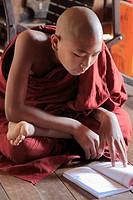 Myanmar, Burma, Nyaungshwe, buddhist monks studying scriptures, Shwe Yaughwe Kyaung monastery,
