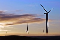 Wind turbines silhouetted at dawn with ground fog, Judith Gap, Montana