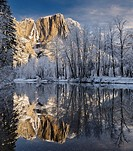 Snow covered trees and Yosemite Point and the Upper Fall reflected in the Merced River in winter