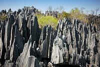 Geological formations, Tsingy de Bemaraha National Park, Mahajanga, Madagascar