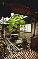 Japan, Kyoto,,Myoshinji Temple, small garden tsuboniwa bamboo