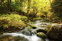 South Branch of the Israel River during the autumn months which runs along Jefferson Notch Road in the White Mountains, New Hampshire USA