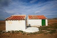 Gallocanta Wildlife Refuge, Zaragoza province, Aragon, Spain