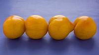 plums,