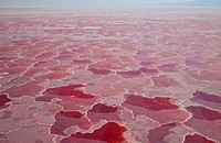 Lake Natron, Rift Valley, Tanzania