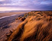 Sand Dunes at Westward Ho! and Northam Burrows in the evening sunlight, Devon, England, United Kingdom