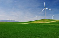 group of windmills in an idyllic green meadows