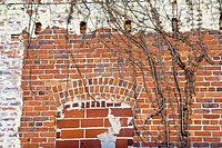 Ocala, FL - Mar 2009 - Old brick wall with old paint and filled in arched windows