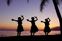 Three hula dancers perform at sunset framed by a palm tree at Olowalu, Maui, Hawaii, USA
