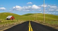 Road at Northern California, USA