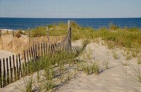 A fence protects fragile dunes, Long Beach Island, New Jersey, USA