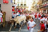 Encierro, the running of the bulls, Fiesta de San Fermin, Festival of San Fermin, Pamplona, Province of Navarre, Spainen San Fermin, Pamplona Navarra,...