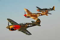 North American P-51 Mustang USAF WWII fighter powered by Rolls Royce merlin engine, attack fighter (top). Curtiss P-40 Warhawks, WWII fighters used in...