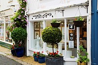 Simon Drew Gallery on Foss Street Dartmouth Devon England