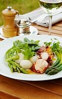 France, Centre, Indre & Loire, Tours surroundings, village Rochecorbon, hôtel ´les Hautes Roches´, chef Didier Edon 1*, new veggetables lobster & iber...