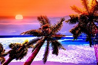 Concept montage image of a tropical scene, with palm trees, sunset, and beach waves, with distorted, saturated colors