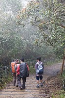 Kinabalu National Park, Kinabalu, Gunung Kinabalu or Mount Kinabalu, Sabah, Borneo, Malaysia