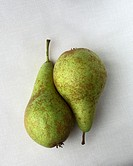 Two pears arranged in a still life composition.
