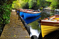 Rowing boats on a river near Lough Corrib, Galway, Ireland