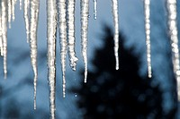 Icicles Hanging from Roof dripping water