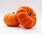Two small pumpkins on a white background