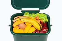 Food waste for composting in domestic recycling waste bin