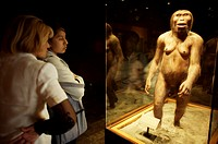 Tourists look at an statue of an Australopithecus Afarensis as they visit the National Museum of Anthropology in Mexico City. The National Museum of A...