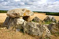 France, 85: dolmen salvatole