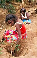 Aboriginal women collecting frogs to eat