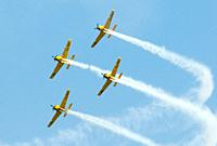 Vintage US Navy Squadron flying in formation at air show  Chicago Air and Water Show