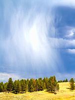 Stormy rainy clouds in Hayden Valley