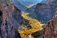 Zion Canyon during autumn from Observation Point at Zion National Park, Utah