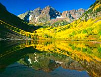Maroon Bells Aspen Trees Fall Reflecton Colorado USA