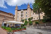 Italy, Urbino, palazzo ducale