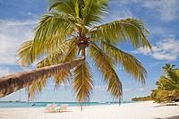 america, caribbean sea, hispaniola island, dominican republic, saona island, sea and beach with palms