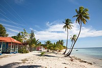 Village and palms on the beach. Saona Island, Dominican Republic, Caribbean.