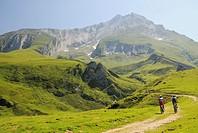 Col du Soulor, Arrens-Marsous, Hautes-Pyrenees, Midi-Pyrenees, France