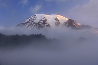 Clouds surrounding summit of Mount Rainier at sunrise  Cascade Range, Pierce County, Mount Rainier National Park, Washington State, USA, America