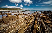 Coastal landscape, Algeciras, Andalusia, Spain.