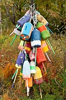 Lobster buoys, Owls Head, Maine, USA