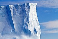 Iceberg detail in and around the Antarctic Peninsula during the summer months, Southern Ocean  MORE INFO An increasing number of icebergs is being cre...