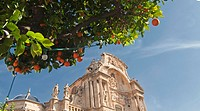 Main Facade of the Cathedral Church of Saint Mary in Murcia, with orange trees in the foreground, at the plaza del Cardinal Belluga, City of Murcia, S...