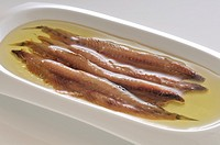Salted anchovies to the traditional method of the Costa Brava, Catalonia, Spain, Europe